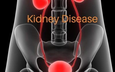 Hair Loss from Kidney Disease