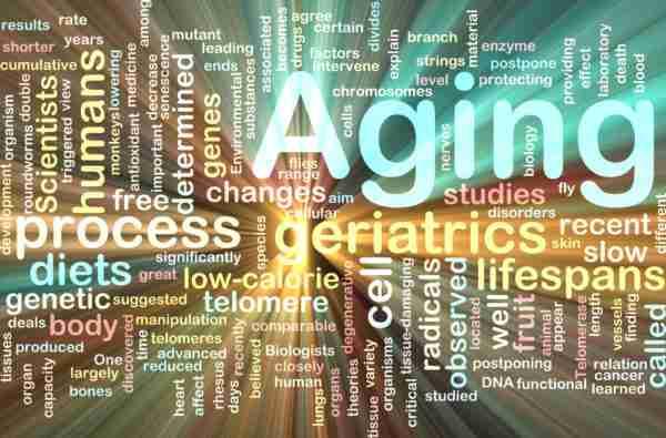 Anti-Aging Natural Pharmaceuticals
